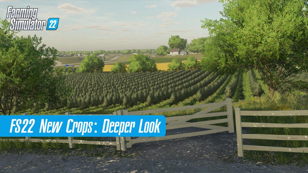 Farming Simulator 22 Crops: A Deeper Look