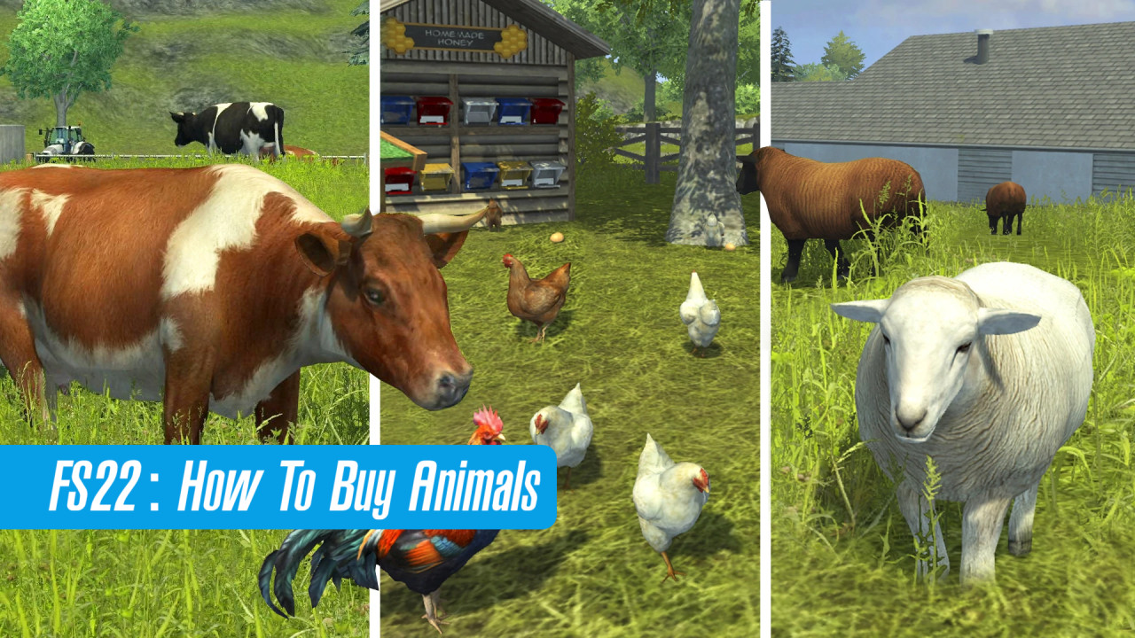 How To Buy Animals in FS22